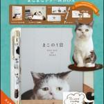"""不思議顔の猫""""まこ""""のフォトブック&ステーショナリー4点セットが発売"""