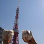 東京タワー限定のモスバーガーを食べてみた!
