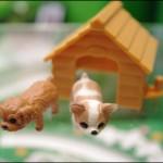 """癒し系玩具!ミニチュアペット""""ぶるかわ""""な「じゃれ犬」"""